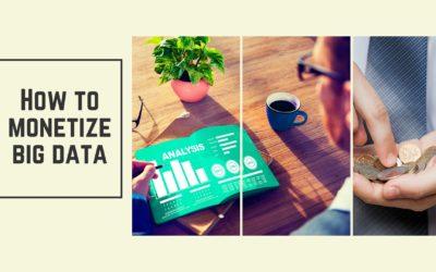 Monetizing Big Data
